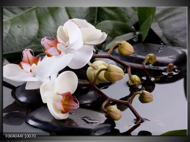 Foto canvas schilderij Orchidee   Geel, Zwart, Wit