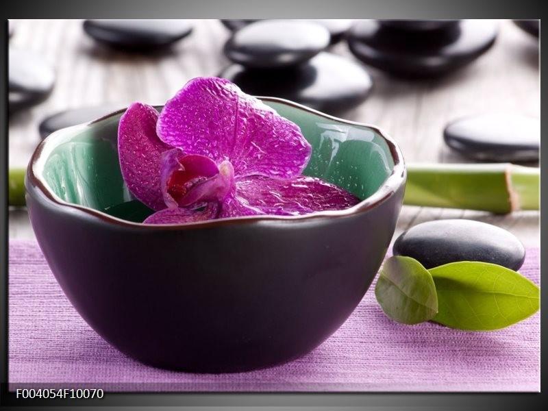 Glas schilderij Orchidee | Paars, Groen