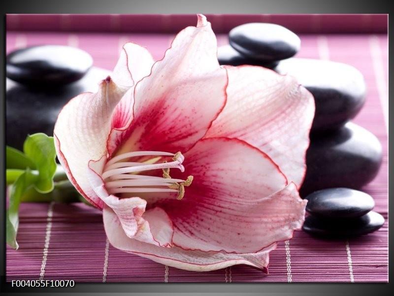 Foto canvas schilderij Bloem | Wit, Roze, Groen