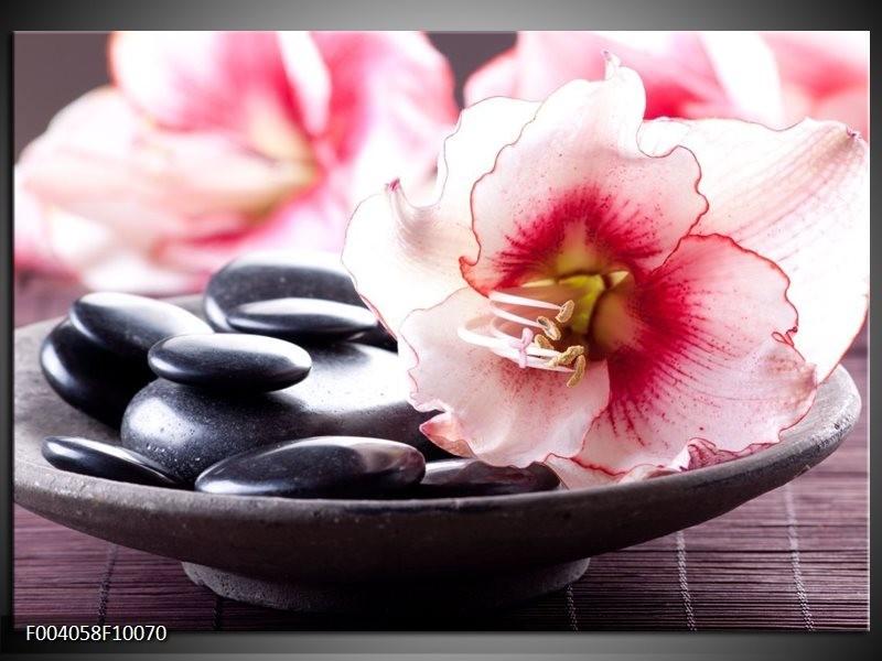 Foto canvas schilderij Bloem | Wit, Roze, Zwart