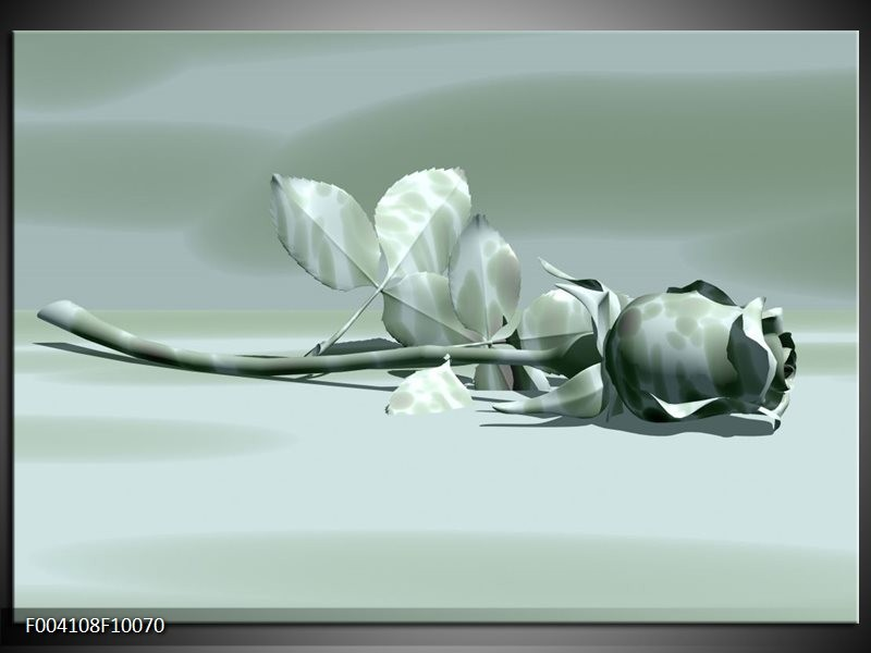 Glas schilderij Roos | Grijs, Wit