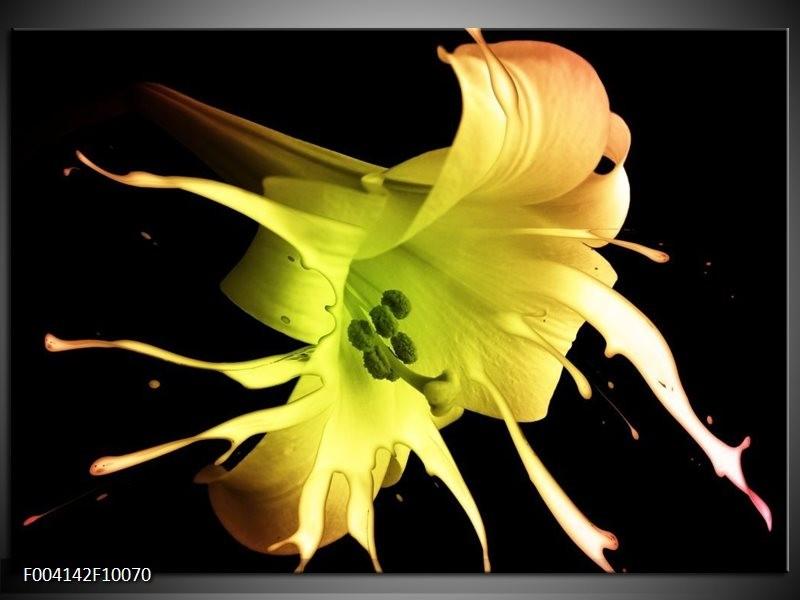 Glas schilderij Bloem   Zwart, Geel, Groen