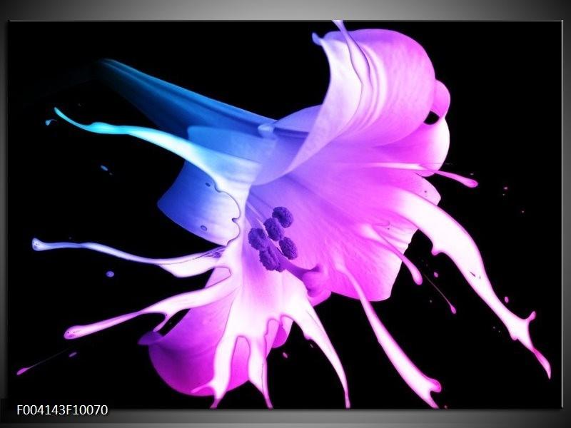 Foto canvas schilderij Bloem | Zwart, Paars, Blauw