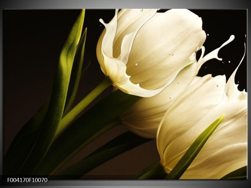 Glas schilderij Tulp | Wit, Groen, Zwart