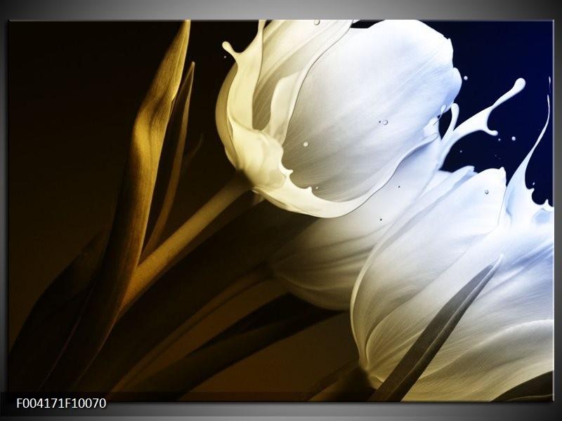 Glas schilderij Tulp | Wit, Groen, Blauw