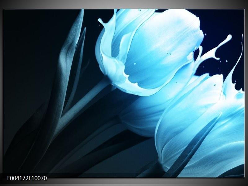 Glas schilderij Tulp | Blauw, Zwart