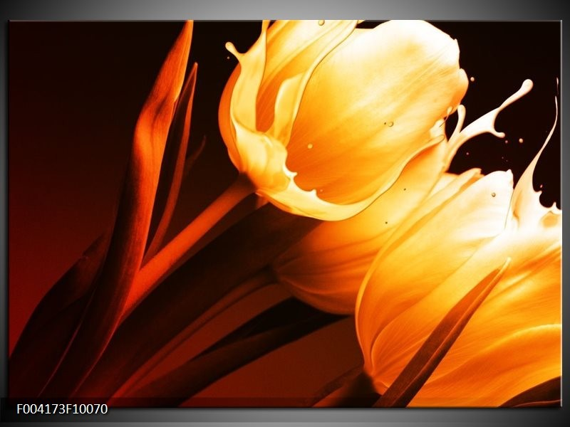 Glas schilderij Tulp   Geel, Oranje, Bruin