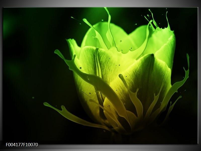 Foto canvas schilderij Tulp | Groen, Zwart