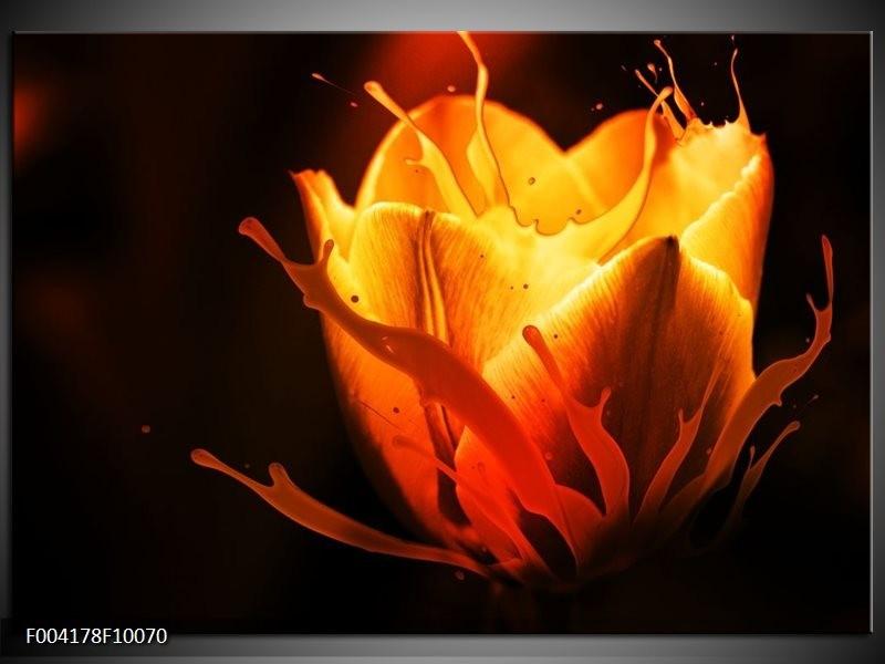 Foto canvas schilderij Tulp | Oranje, Zwart, Geel
