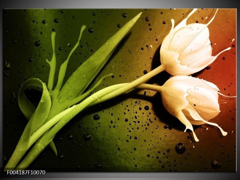 Foto canvas schilderij Tulp | Groen, Wit, Bruin