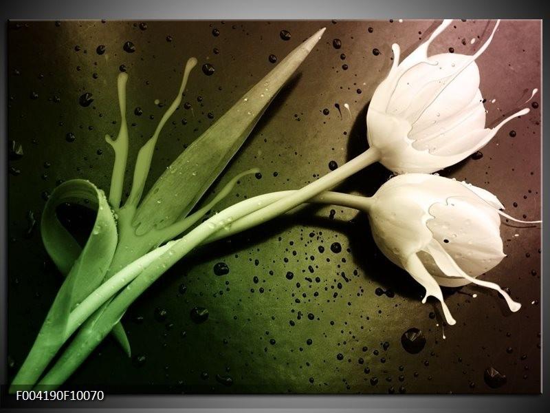 Glas schilderij Tulp | Groen, Wit