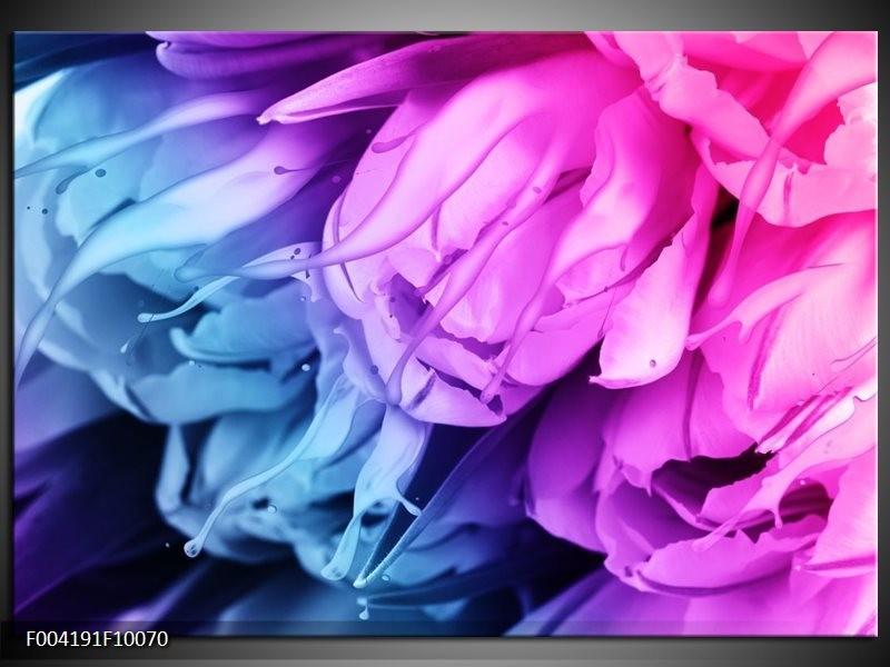 Foto canvas schilderij Tulp | Blauw, Paars