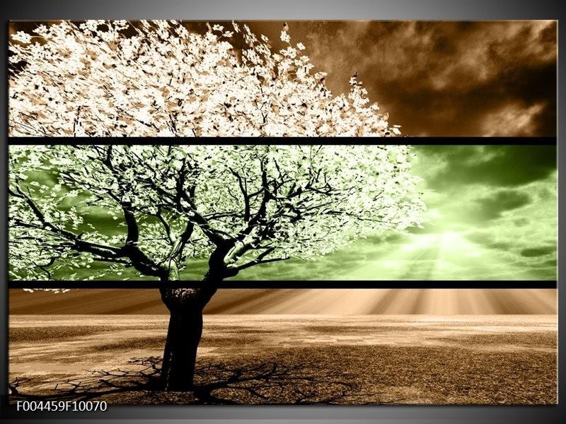 Glas schilderij Boom | Bruin, Groen, Zwart