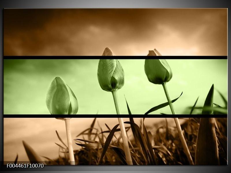 Foto canvas schilderij Tulp | Groen, Bruin
