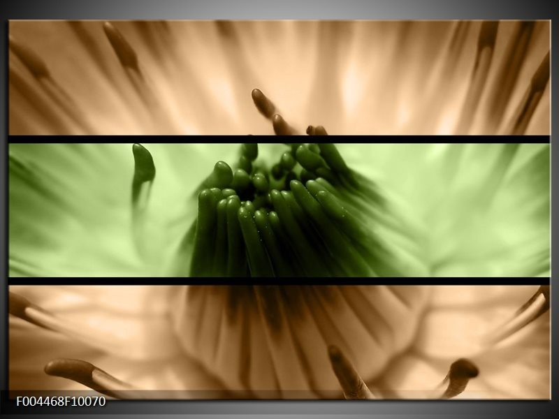 Glas schilderij Bloem | Groen, Bruin, Zwart
