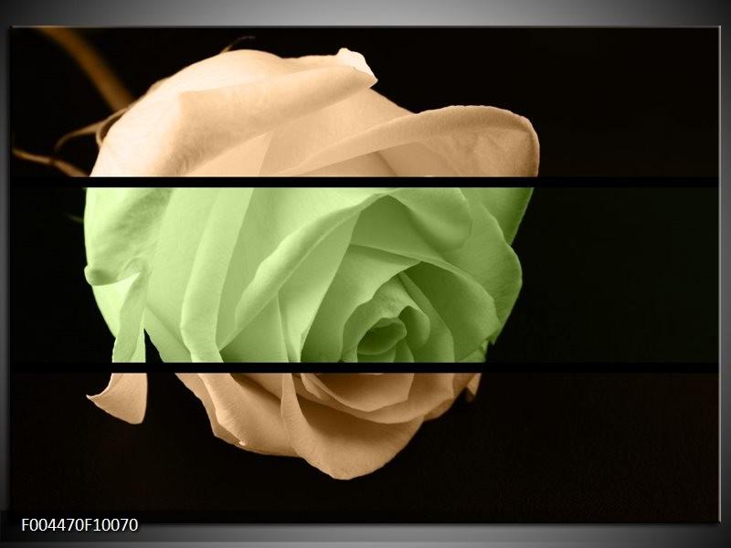 Glas schilderij Roos | Groen, Bruin, Zwart