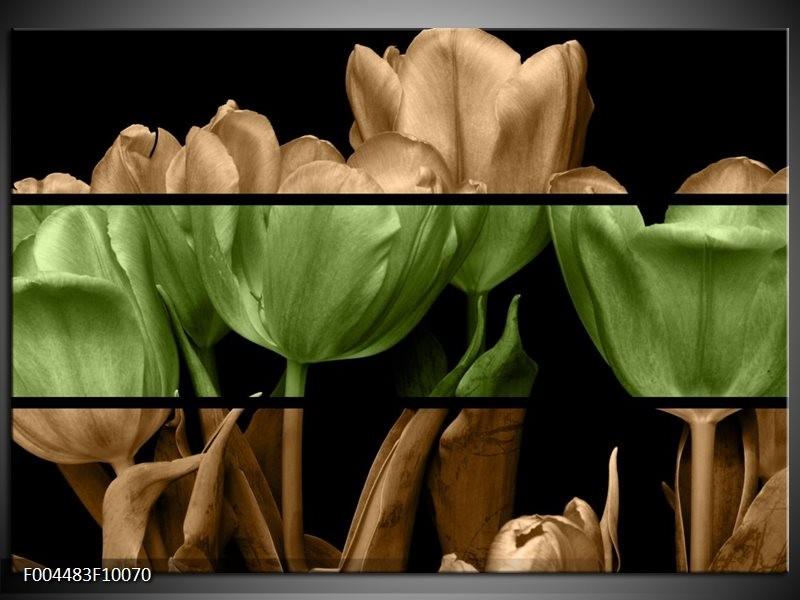 Foto canvas schilderij Tulp | Groen, Bruin, Zwart