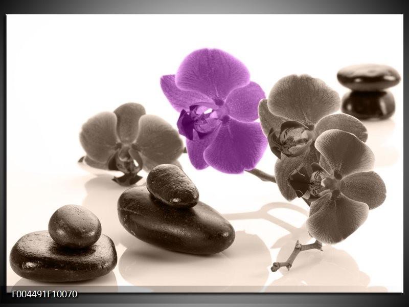 Foto canvas schilderij Orchidee   Paars, Grijs, Wit