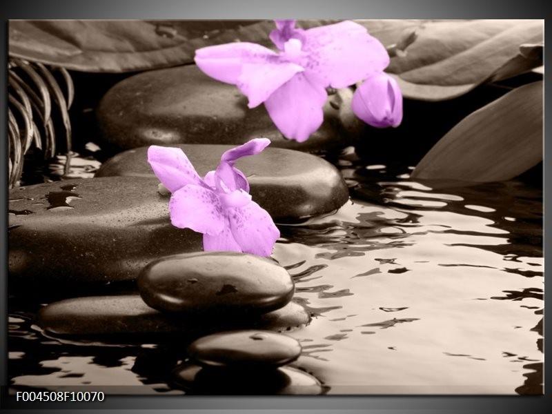 Glas schilderij Orchidee | Grijs, Paars