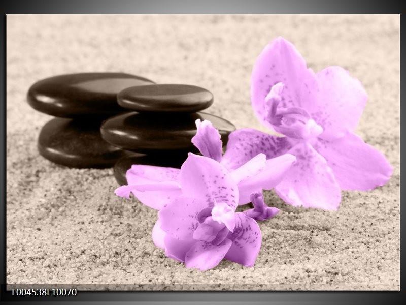 Glas schilderij Orchidee | Paars, Grijs, Zwart