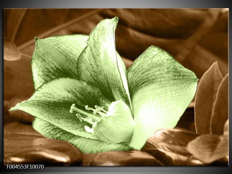 Glas schilderij Bloem | Groen, Bruin
