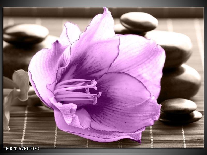 Glas schilderij Orchidee | Paars, Grijs