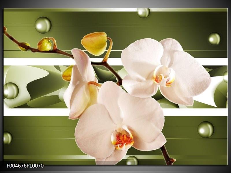 Glas schilderij Orchidee | Groen, Roze, Wit