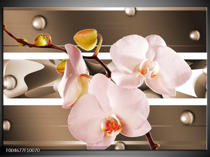Glas schilderij Orchidee | Bruin, Roze