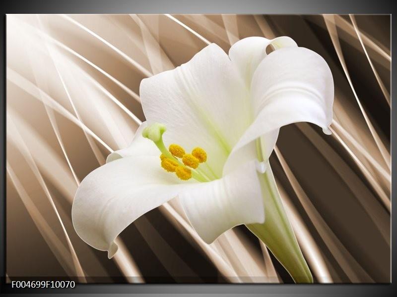 Glas schilderij Bloem   Bruin, Wit, Groen