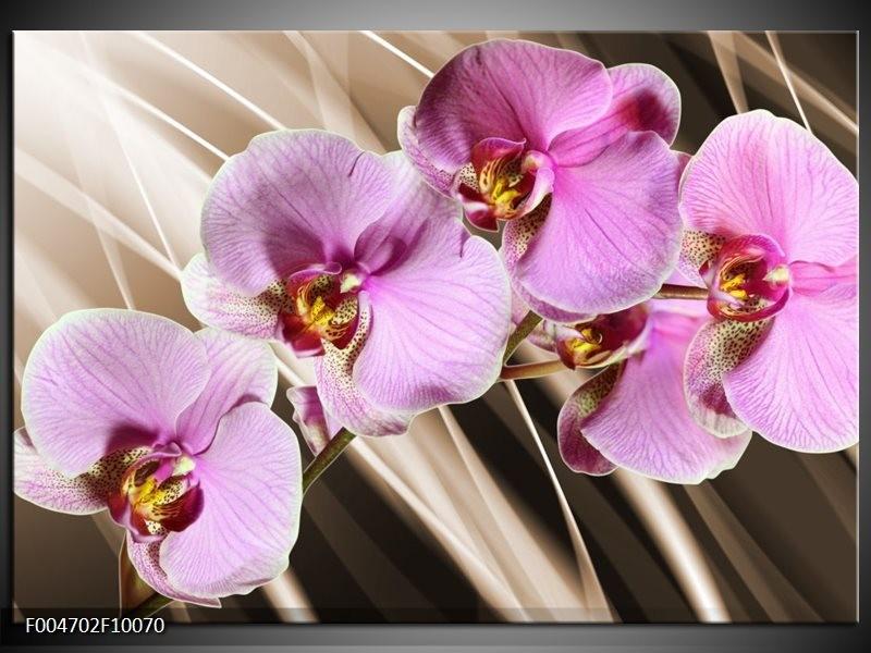 Glas schilderij Orchidee   Groen, Bruin, Roze