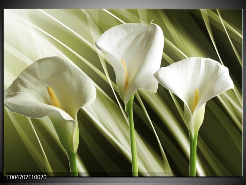 Glas schilderij Bloem   Groen, Wit