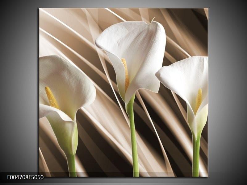 Canvas schilderij Bloem | Bruin, Wit, Groen | 50x50cm 1Luik