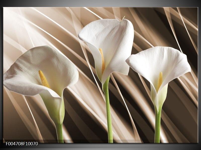 Glas schilderij Bloem | Bruin, Wit, Groen