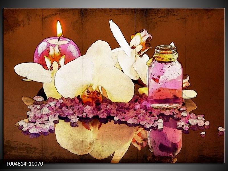 Glas schilderij Orchidee   Paars, Wit, Bruin