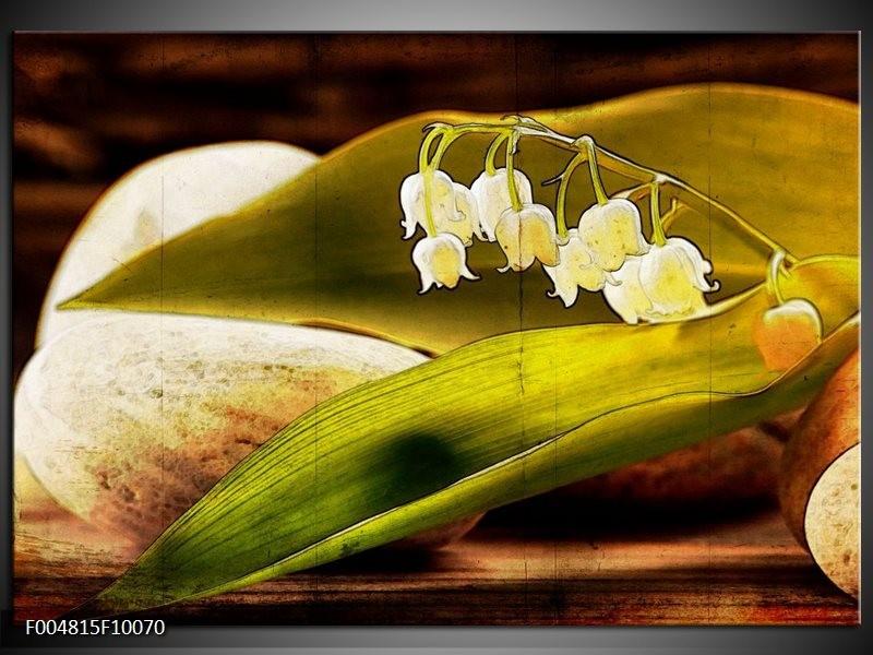 Glas schilderij Bloem | Groen, Wit, Bruin