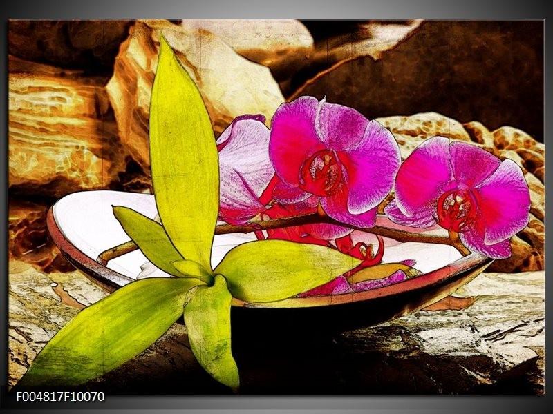 Glas schilderij Orchidee | Paars, Groen, Bruin