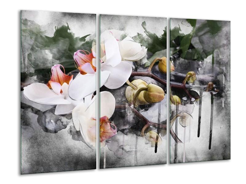 Canvas schilderij Orchidee | Wit, Grijs | 120x80cm 3Luik