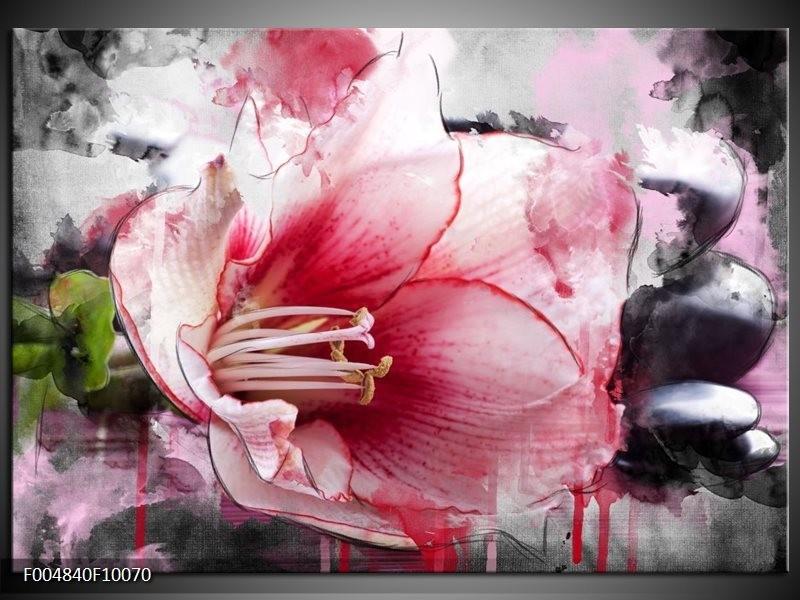 Glas schilderij Bloem | Rood, Grijs, Wit
