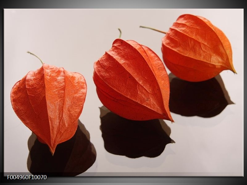 Glas schilderij Spa | Oranje, Grijs, Bruin