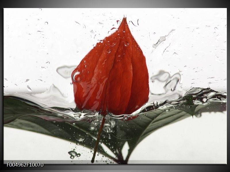 Glas schilderij Keuken | Rood, Grijs, Wit