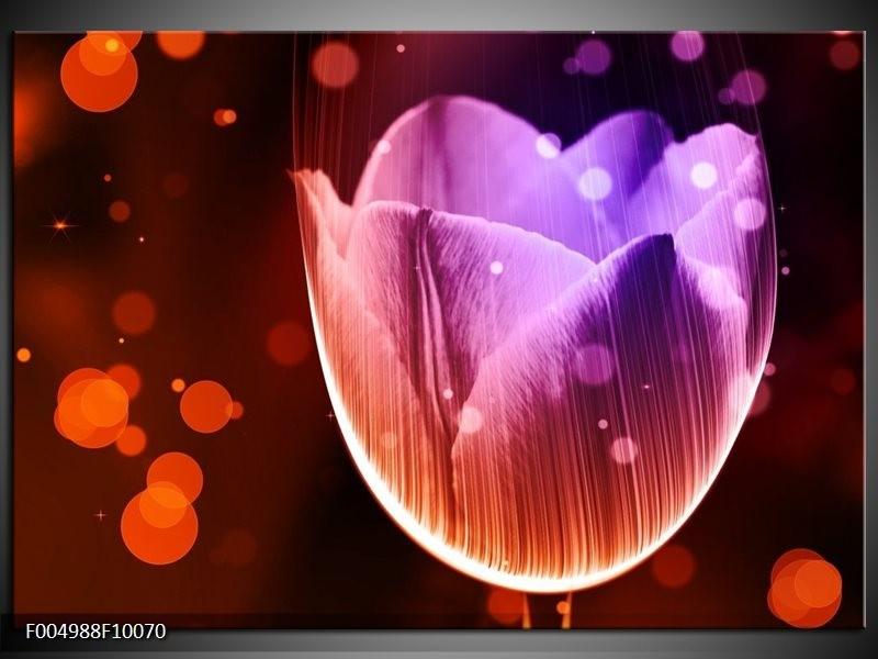 Glas schilderij Tulp | Paars, Rood