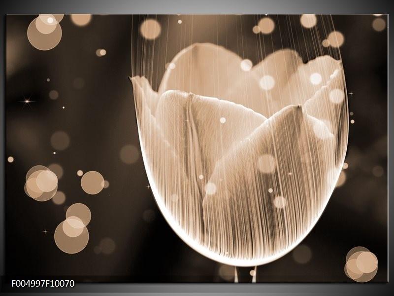 Glas schilderij Tulp | Grijs, Zwart