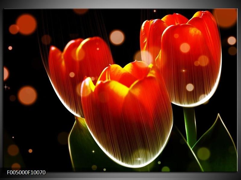 Glas schilderij Tulp | Oranje, Geel, Rood