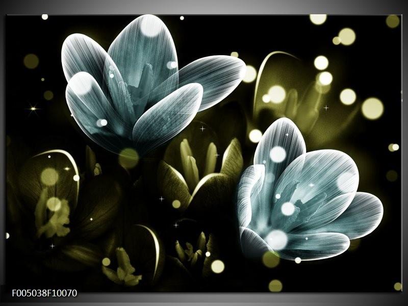 Glas schilderij Krokus | Blauw, Groen