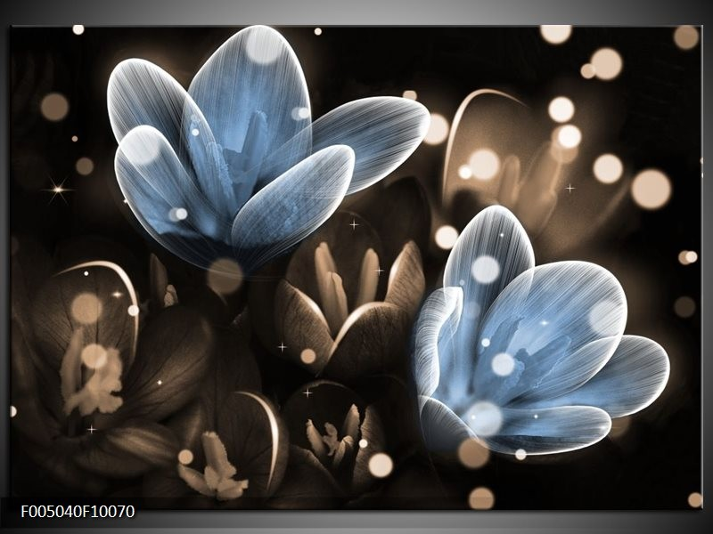Glas schilderij Bloem | Blauw, Grijs