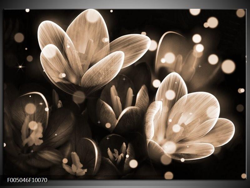 Glas schilderij Bloem | Grijs, Zwart
