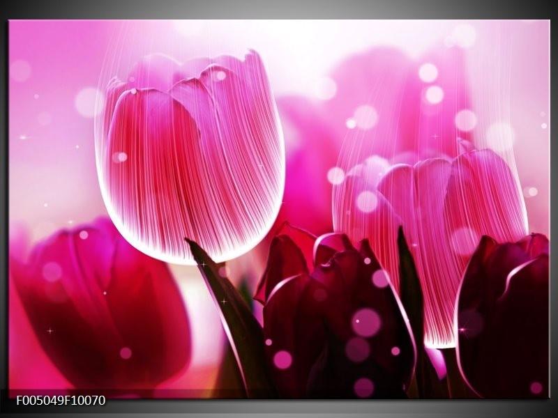 Glas schilderij Tulp | Roze, Wit, Grijs