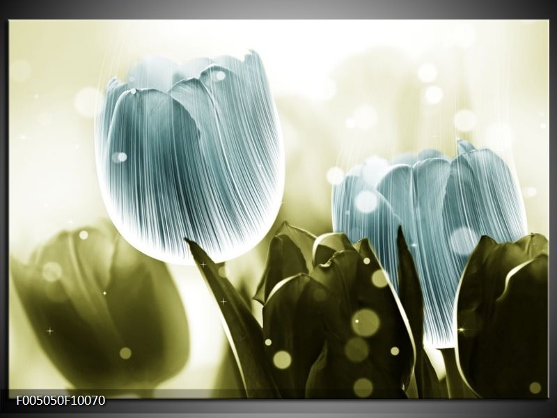 Glas schilderij Tulp | Blauw, Groen