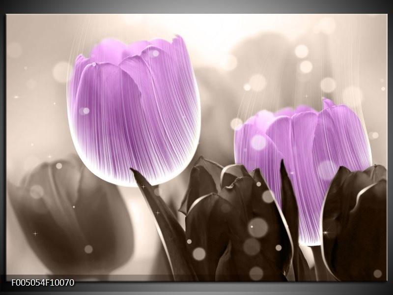 Glas schilderij Tulp | Paars, Grijs