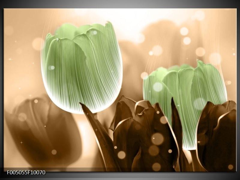 Glas schilderij Tulp   Groen, Bruin